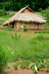 Thai Wife Village house 01